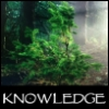 jenett: A young pine tree (knowledge)