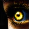 tala_wolf: (Wolf Eye)