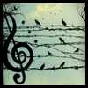 kitsune: Birds sitting on barbed wire, looking remarkably like musical notes (Music-birds)