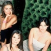 jazzy_dave: (charmed gals)