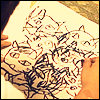 kuroneko893: From the movie Ju-On, cat scribblings, multiple cats.  Yurei or bakeneko related posts. (Ju-On: Cat Drawing 1)