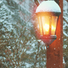 skieswideopen: A hanging lamp covered in snow (Winter)