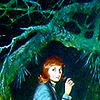 caitie: creep creep creep (fandom | books | Nancy Drew (woods))