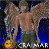 we_are_spc: owl-winged man with name, starry night sky and guitar in background. (Craimar)