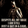 "rose_griffes: batman: ""Despite all my rage, I'm still just a bat in a cave"" (bat in a cave)"