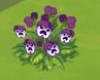 orange_prose: Angry violets from The Sims Social (violent)