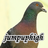"jumpuphigh: Pigeon with text ""jumpuphigh"" (Default)"