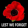 needled_ink_1975: A red poppy, black background; caption: Lest We Forget (11-11)