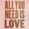fawkesfires: (words ♔ all you need is love.)