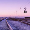 thiefofvoices: traintracks in the desert gloaming, disappearing to the horizon (gloaming traintracks)