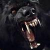 onikins: (Teeth)