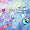 revolutions: A close-up of a feather with water droplets shimmering on it (feather)