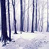 illan: (winter)