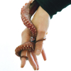 kephalopod: (kephalopods)
