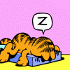 kshandra: Cartoon: Garfield face-down in his cat bed, a single Z in a word balloon over his head (Z)