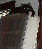 xtina: (magic, lurker above)