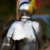 enviropony: (knight)