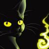 kuroneko893: (Hissing cat)