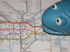 ckd: A small blue foam shark sitting on a London Underground map (london)