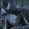 darkwolf: (Grey Spidey)