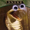 ambersweet: A MtG card featuring a snake with googly eyes pasted on. (Googly snake)