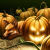 sheistheweather: (Pumpkin-Fox)