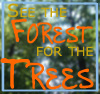 dawn_felagund: (forest for the trees)