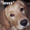 dawn_felagund: (alex loves)