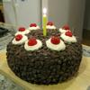 solarbird: (cake)