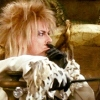beccaelizabeth: Bowie as Jareth sits and taps his cane (Bowie)