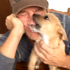 highlander_ii: Mike Rowe with his dog Freddy ([MRowe] Mike & Freddy)