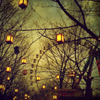 anaraine: Lit lanterns hang from leafless trees, with a ferris wheel in the background. ([photo] hanging lanterns)