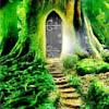 goss: (Forest pathway)