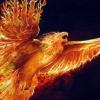 belgita: (firebird)