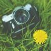 cwicum: (camera)