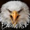 eaglest: angry eagle (angry eagle)
