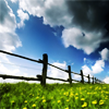 morethanmending: (split rail fence) (Default)