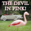 lilly_c: (Bernard - devil in pink)