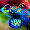 wishuponafish: (Default)