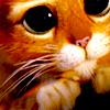isleofapples: (dreamworks // puss (big eyes))